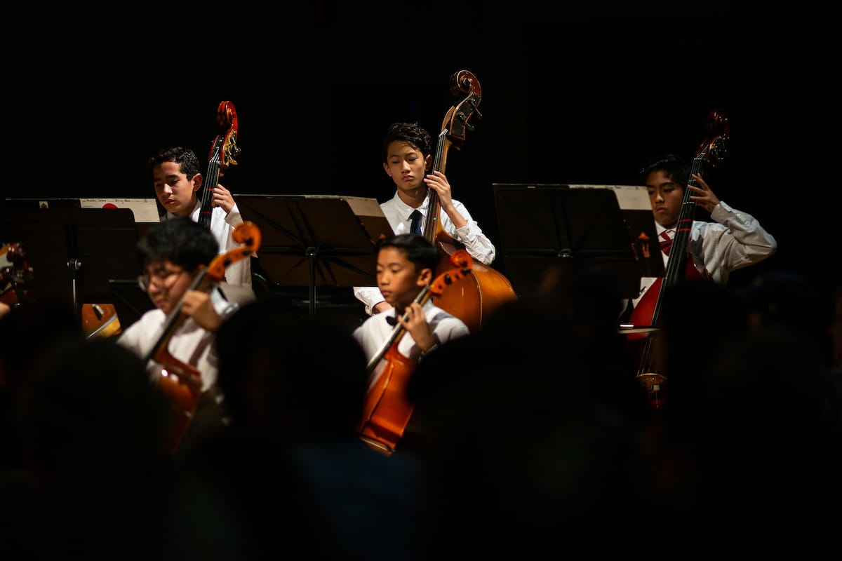 children playing cellos